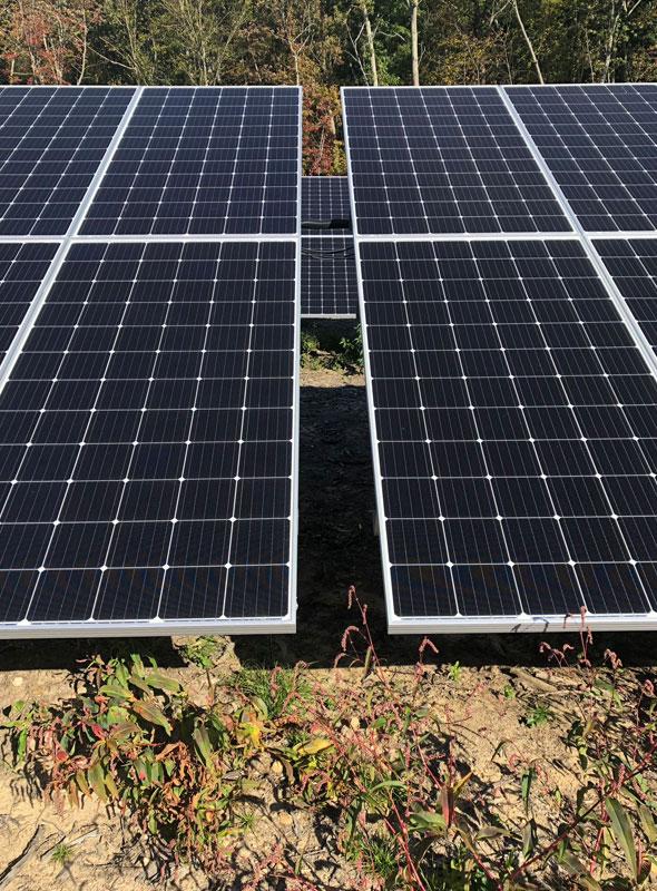 Burrillville Solar Panel Closeup